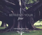 Befriend your Fear